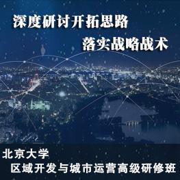 北京大学区域开发与城市运营高级研修班