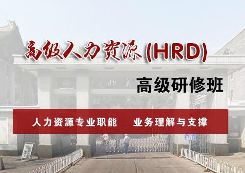 高级人力资源(HRD)研修班