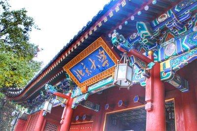 北京大学新型国际化领航人项目
